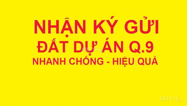Bán đất nền dự án ĐH Bách Khoa và Phú Nhuận phường Phú Hữu Phước Long B quận 9