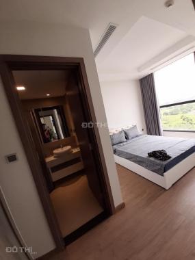 Cho thuê căn hộ dự án mới Vinhomes D'Capitale - Trần Duy Hưng, 76m2, 2PN, vừa setup xong nội thất