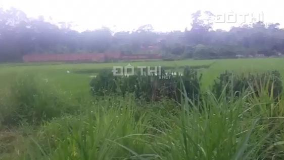 Chính chủ bán đất tại xã Minh Trí, huyện Sóc Sơn, HN