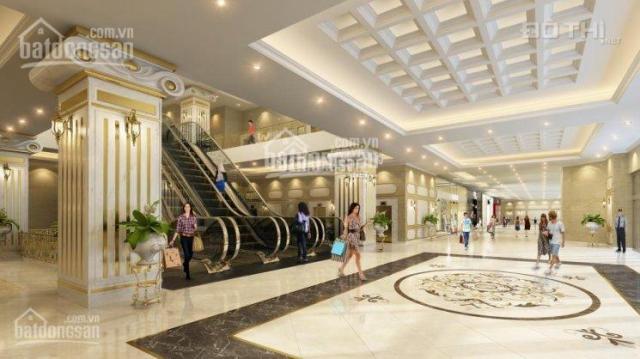 Bán gấp căn hộ 92m2 view hồ Hoàng Cầu dự án Skyline, thiết kế 2PN - 2WC, giá chỉ 4,8 tỷ