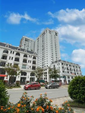 Cơ hội cuối cùng sở hữu căn hộ 2PN đối diện biệt thự Vinhomes - Giá từ 1,89 tỷ (full NT cao cấp)