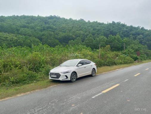 Cần bán nhanh lô đất bám trục đường QL21B tại Kim Bôi, Hòa Bình diện tích 2.7ha