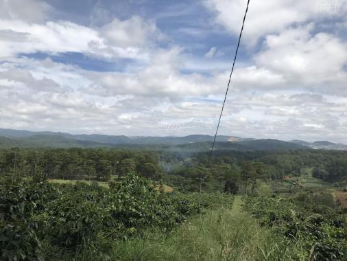 Cần bán gấp 3700m2 đất vườn hồng tại xã Xuân Trường, Tp. Đà Lạt