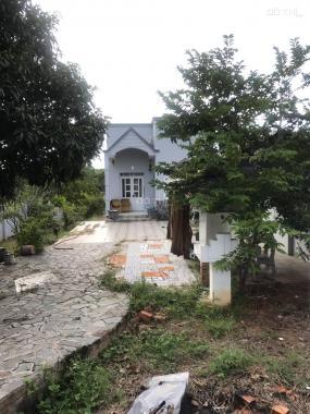 Nhà đất thành phố Phan Thiết 1152m2 ĐT 715, xã Thiện Nghiệp