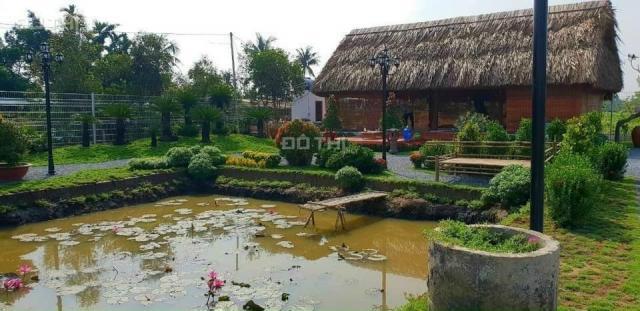 Bán đất tại đường Tỉnh Lộ 7, Xã Thái Mỹ, Củ Chi, Hồ Chí Minh diện tích 500m2 giá 900 triệu