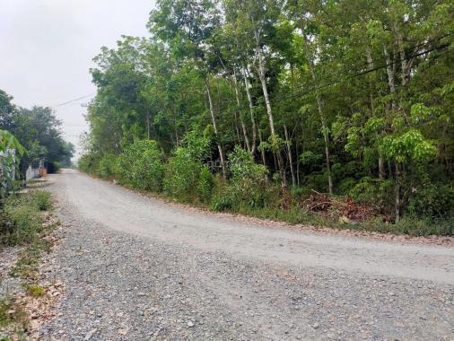 Bán đất Củ Chi, lô đất góc 2 MT đường trải đá xe ô tô tải, 1797m2, có 300m2 thổ cư, xã An Nhơn Tây