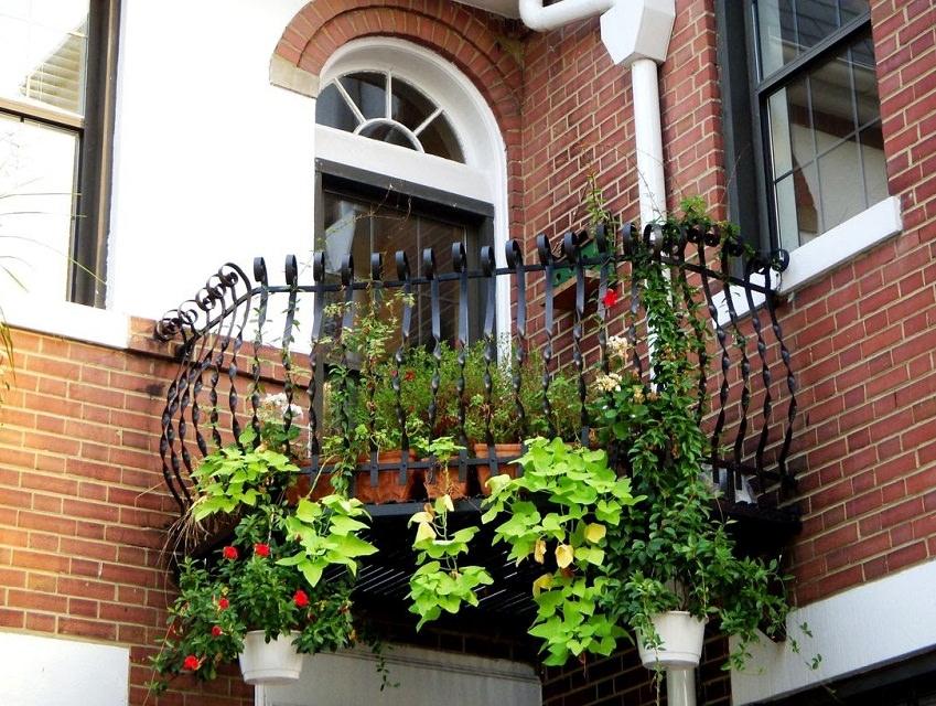 Khu vườn xanh mát, đẹp mắt trên ban công tạo điểm nhấn hút mắt cho ngoại thất nhà phố hiện đại.