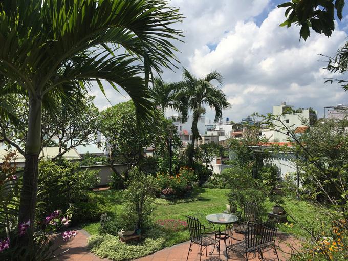 khu vườn trên sân thượng ở Tp.HCM