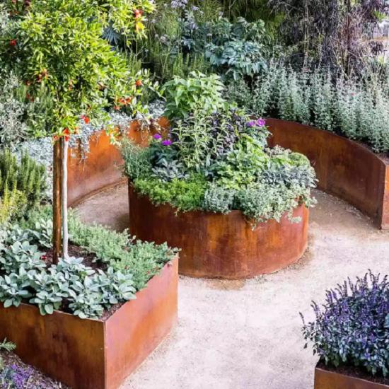 cách chăm sóc vườn nâng