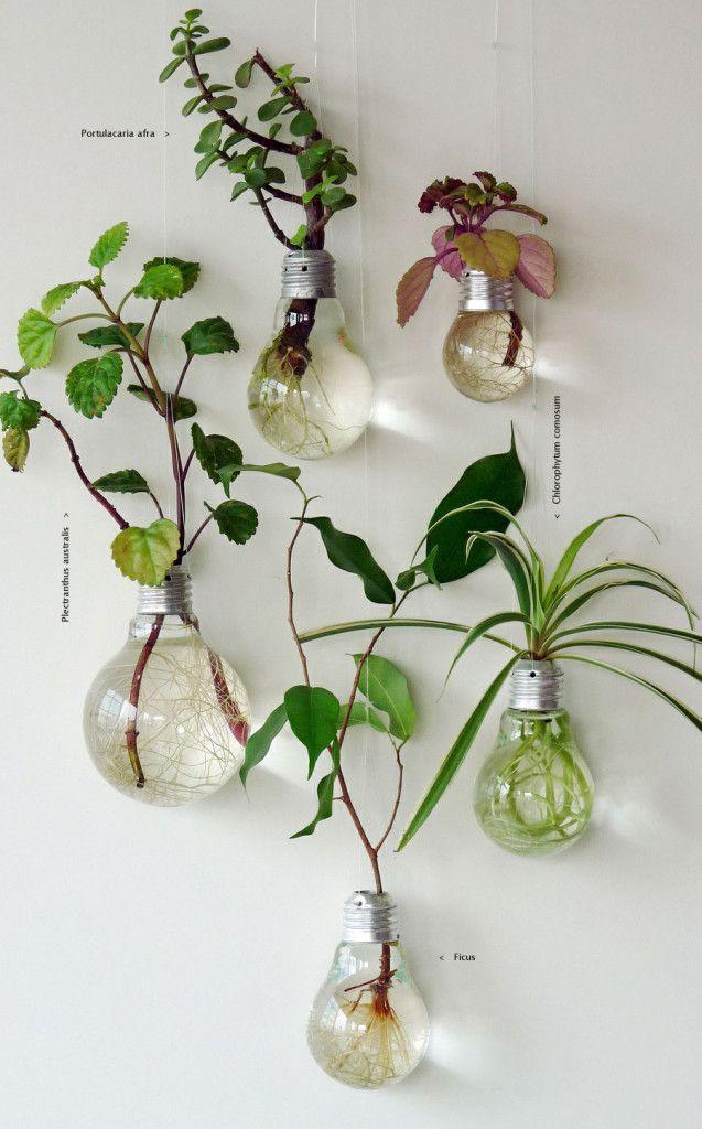 tái chế bóng đèn