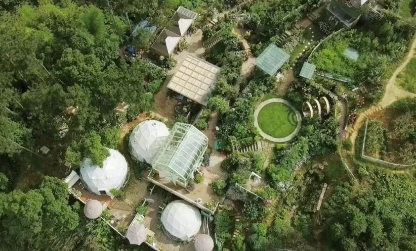 6 tầng trong khu vườn xanh mát