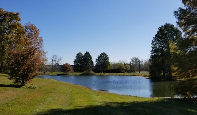 hồ nước nhỏ xanh mát