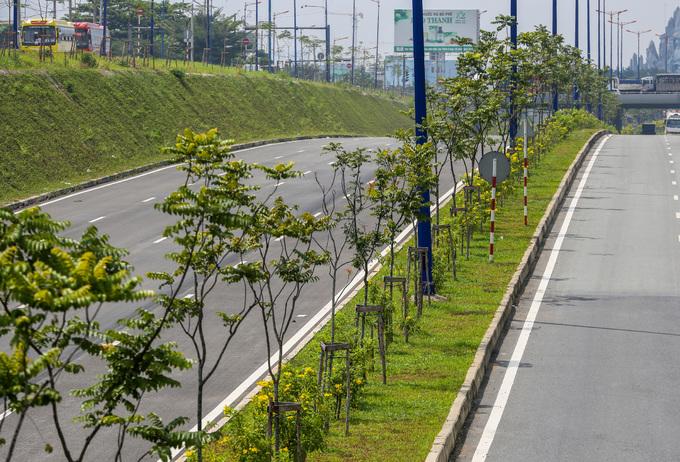 cây xanh tại nút giao Đại học Quốc gia TP.HCM