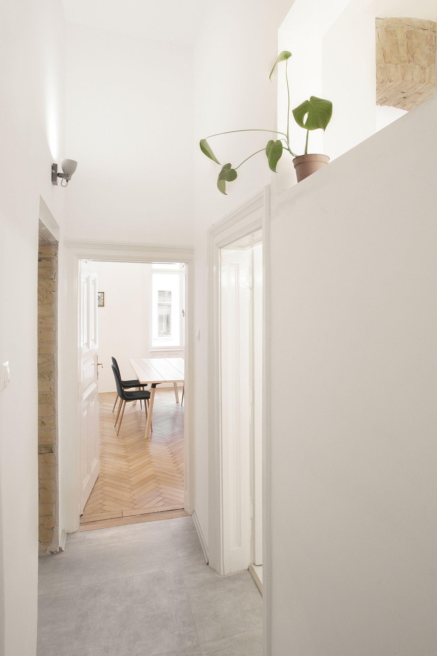 Khu vực hành lang nhỏ với sàn bê tông sạch sẽ, dẫn lối vào phòng tắm, phía trên tường  đặt chậu cảnh nhỏ xinh.