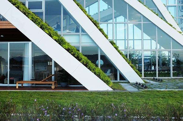Hình ảnh cận cảnh mặt bên tòa chung cư với mái nhà ngập tràn cây xanh