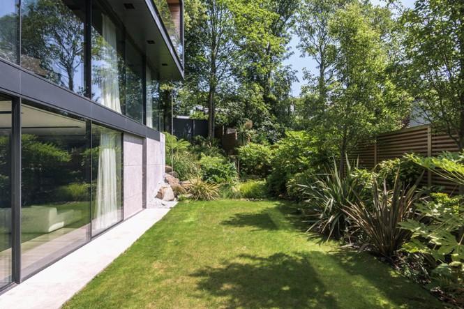 Hình ảnh bên hông nhà có tường kính trong suốt là thảm cỏ, rất nhiều cây xanh