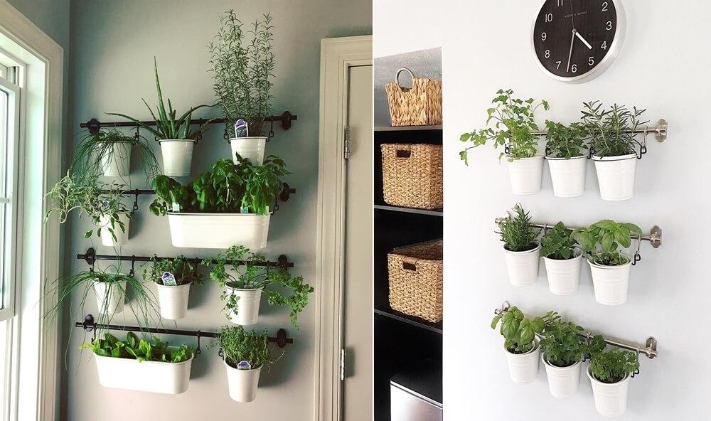 Hình ảnh các loại cây thảo mộc trồng trong các chậu nhỏ màu trắng, gắn trên thanh kim loại treo tường