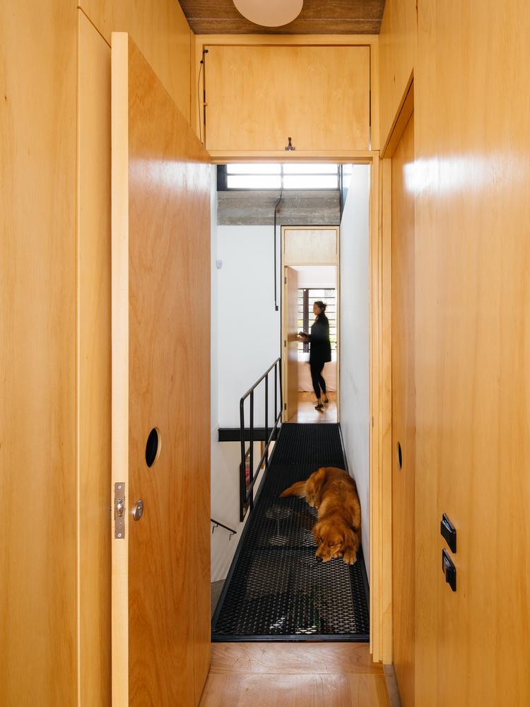 Hình ảnh chú chó màu vàng nằm trên hành lang sắt đục lỗ, tường ốp gỗ màu vàng sáng