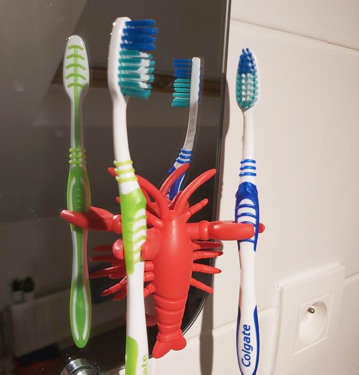 Cận cảnh mẫu giá đỡ bàn chải đánh răng hình con tôm màu đỏ