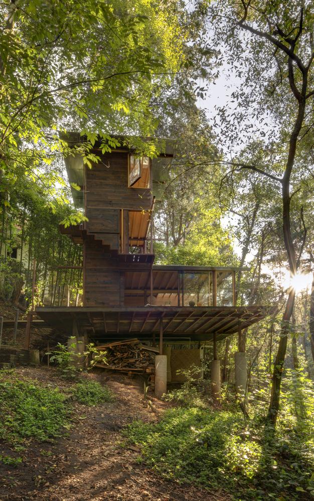 Hình ảnh toàn cảnh ngôi nhà gỗ chụp từ dưới lên với cây xanh mát bao bọc xung quanh.
