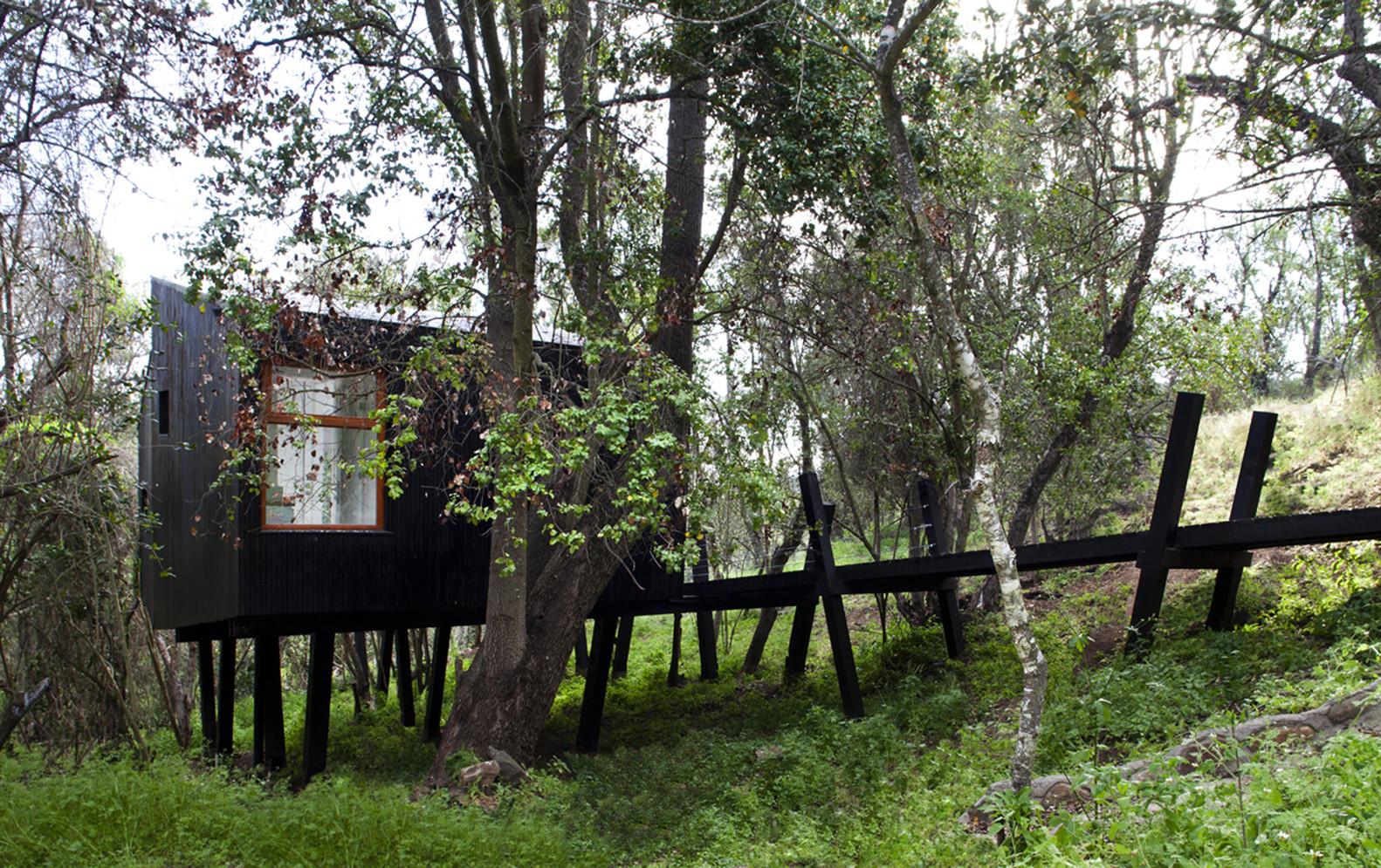 Hình ảnh toàn cảnh một ngôi nhà nhỏ tông màu đen nằm giữa rừng xanh