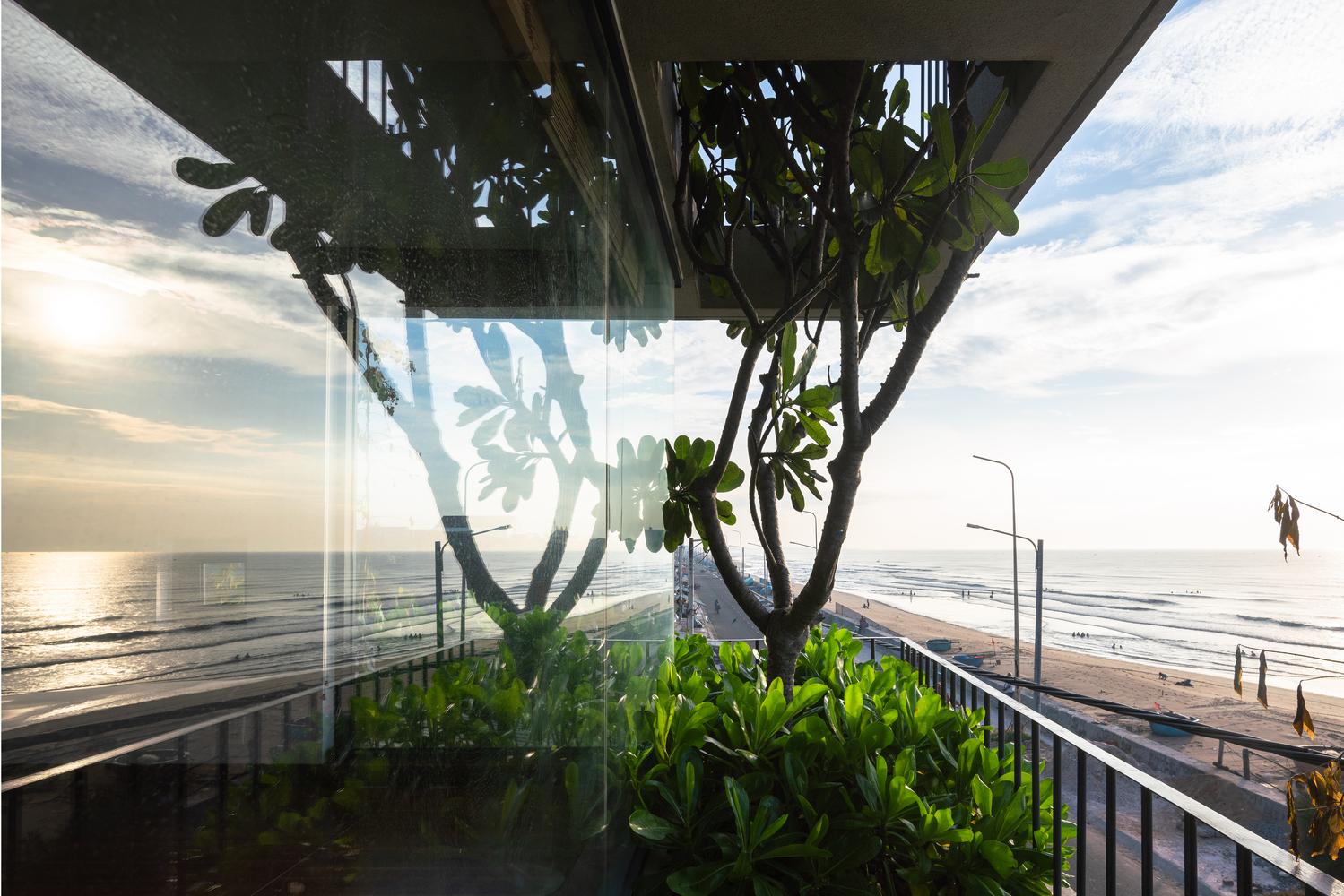 hình ảnh sân thượng trồng cây xanh
