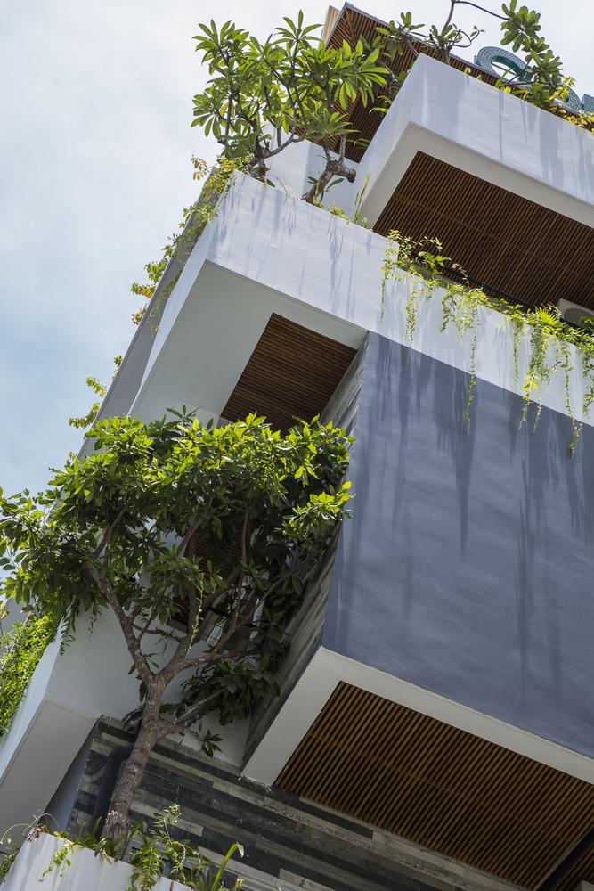 hình ảnh cận cảnh ban công khách sạn trồng các loại cây dây leo