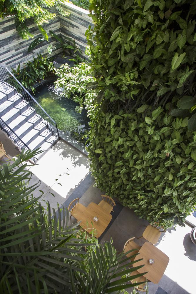 hình ảnh sân vườn xanh mát, hồ cá Koi nhìn từ trên xuống