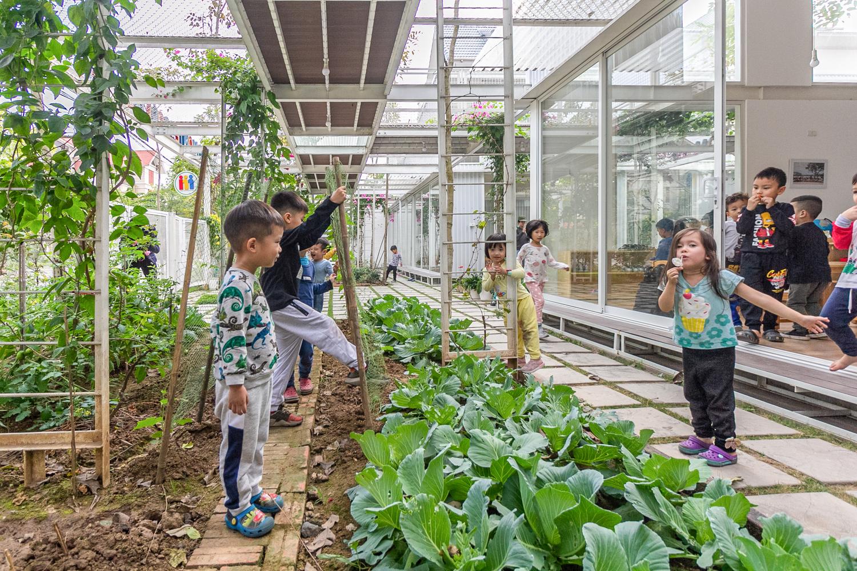 hình ảnh giờ học ngoại khóa khám phá cây hoa, rau củ quả các bé mầm non
