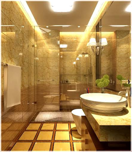 hình ảnh buồng tắm kính được phân tách với khu vực vệ sinh bên ngoài bằng vách kính trong suốt