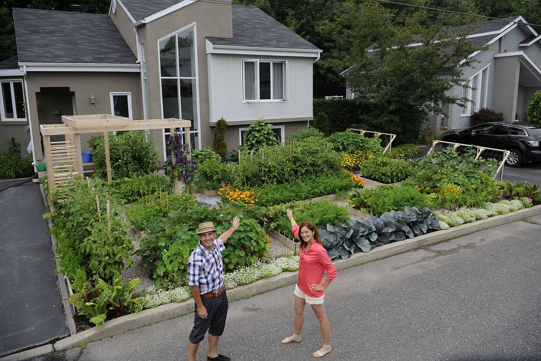 hình ảnh cặp vợ chồng chụp ảnh ở vườn rau củ sân trước nhà phố ở Canada