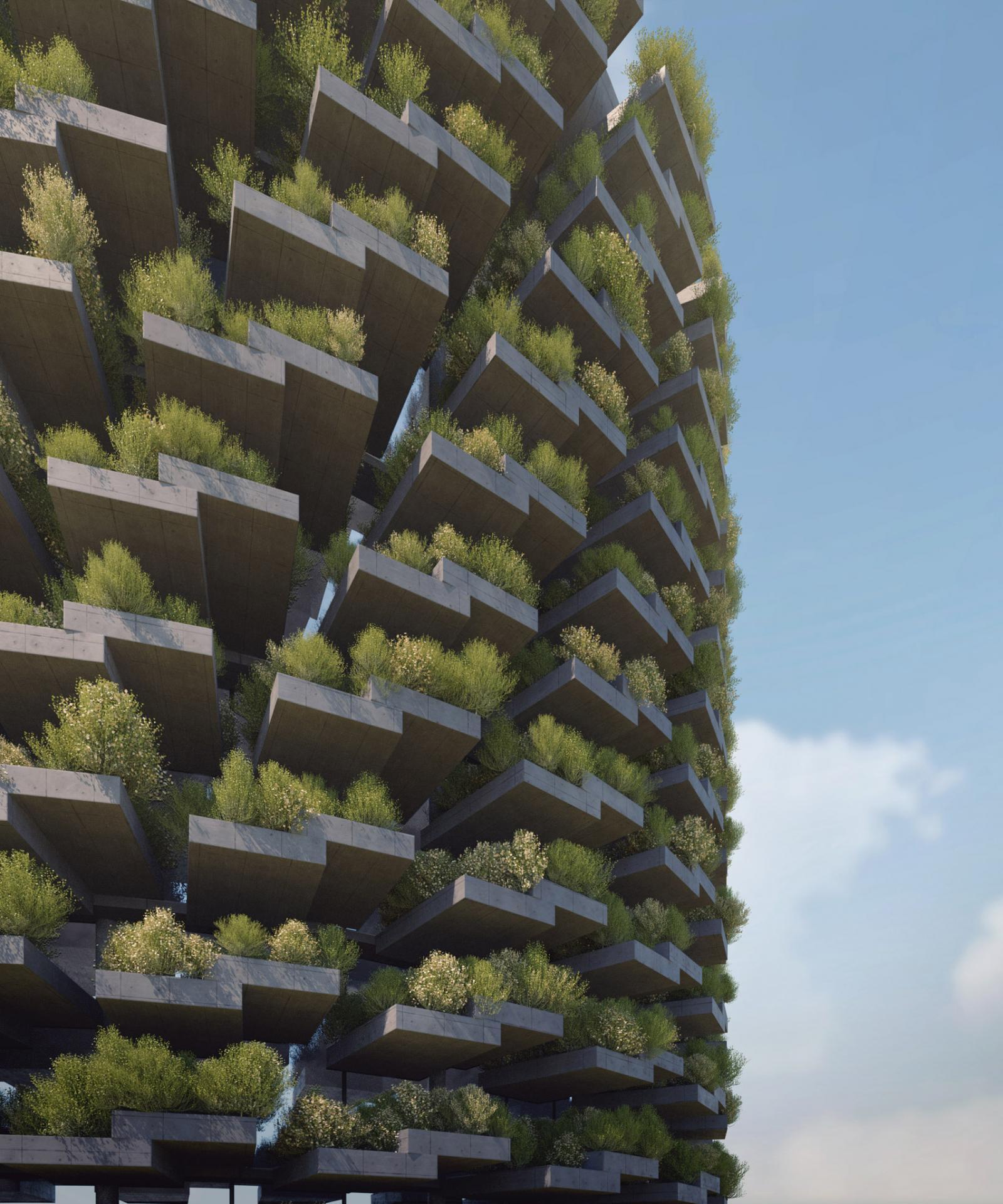 hình ảnh cận cảnh ban công trồng cây xanh
