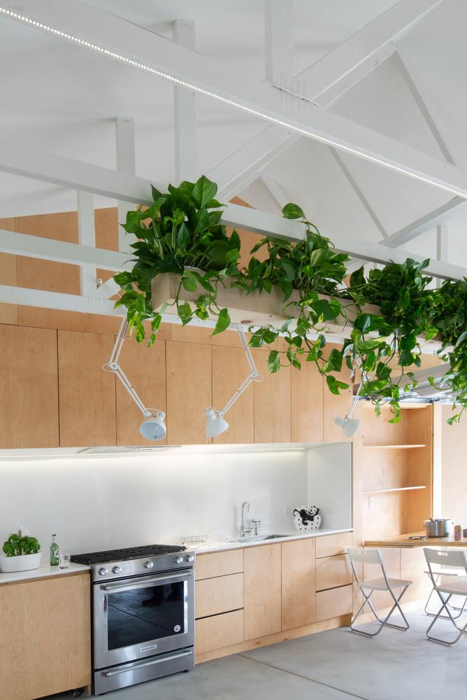 Những chậu cây treo trên trần phòng bếp giúp xanh hóa không gian sống.