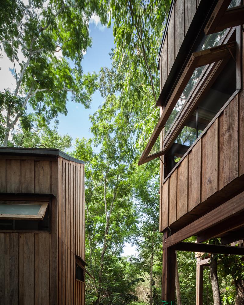 hình ảnh cận cảnh mặt bên ngôi nhà gỗ giữa rừng cây