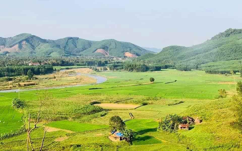 hình ảnh khu đất nông nghiệp nhìn từ trên cao với cánh đồng lúa chính vàng, xung quanh là núi non trùng điệp