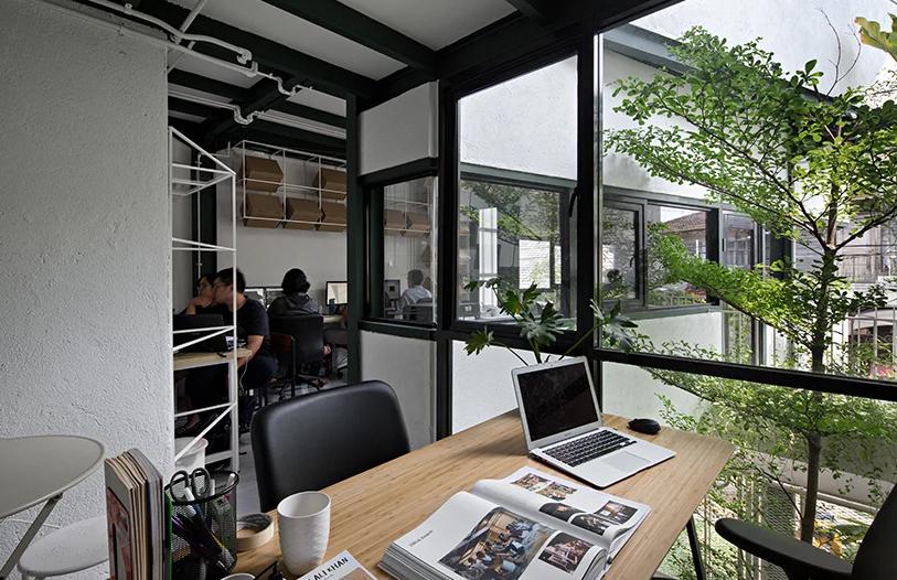 Không gian văn phòng làm việc ngập tràn ánh sáng, cây xanh.