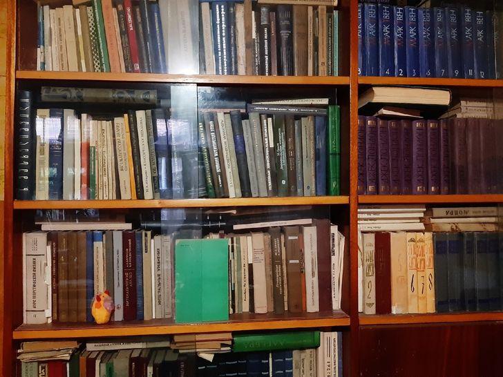 hình ảnh cận cảnh giá sách bằng gỗ, cửa kính