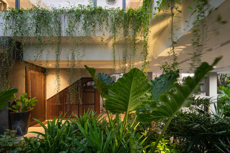 """Cây xanh nhiệt đới hiện diện ở khắp mọi ngóc ngách của ngôi nhà  - tựa như """"lá phổi xanh"""" điều hòa tiểu vi khí hậu."""