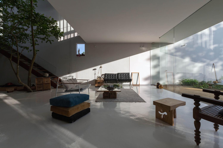 phòng khách ở tầng trệt với cây xanh lớn trồng ở khoảng thông tầng