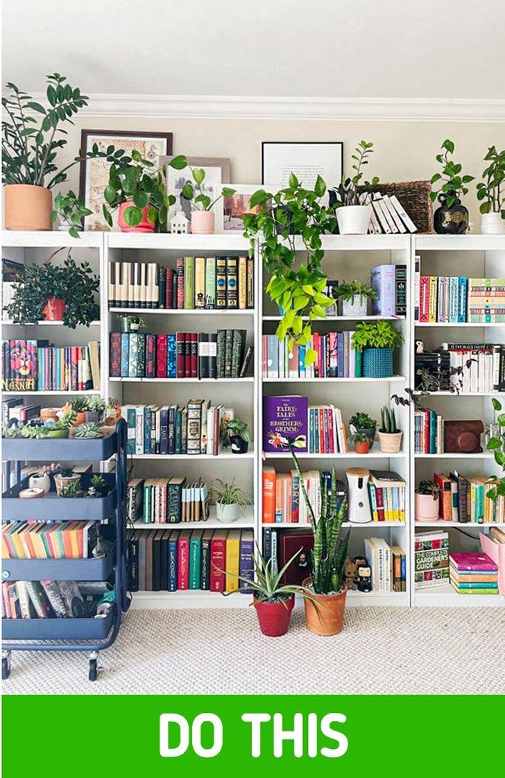 giá sách lớn bài trí xen kẽ cây xanh nhỏ xinh và đồ trang trí