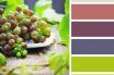 Phong thủy phòng bếp: Màu sắc nào mang lại năng lượng tốt nhất?