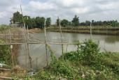Bán gấp đất giáp sông lớn Chợ Mới, An Giang