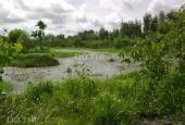 Chính chủ - Bán trang trại sinh thái Củ Chi (9,5 hecta)- TPHCM