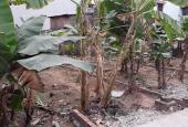 Tôi chính chủ cần bán đất Biên Giang, tương lai sát đường 6 mở rộng, SĐCC. LH 0981.283.393