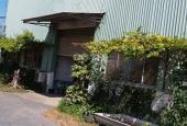 Nhà xưởng KCN Hiệp Phước - Nhà Bè - Mr. Tỉnh 0907.086.079