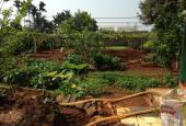 Bán trang trại cực đẹp phường Thành Nhất, TP. Buôn Ma Thuột, Đắk Lắk