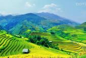 Bán đất tại đường Fansipan, Sa Pa, Lào Cai. 0936023588