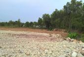 Bán đất tại KP 7, Phan Đăng Lưu, Phường Long Bình, Biên Hòa, Đồng Nai diện tích 1000m2 giá 780tr