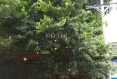 Nhà hot mặt tiền kinh doanh 65 Vườn Lài, gần chợ Tân Bình, DT 8x20m, giá 16.5 tỷ