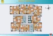 Bán lại căn hộ chung cư Trường Thịnh - 88 Võ Thị Sáu (Giá thấp hơn giá sàn)